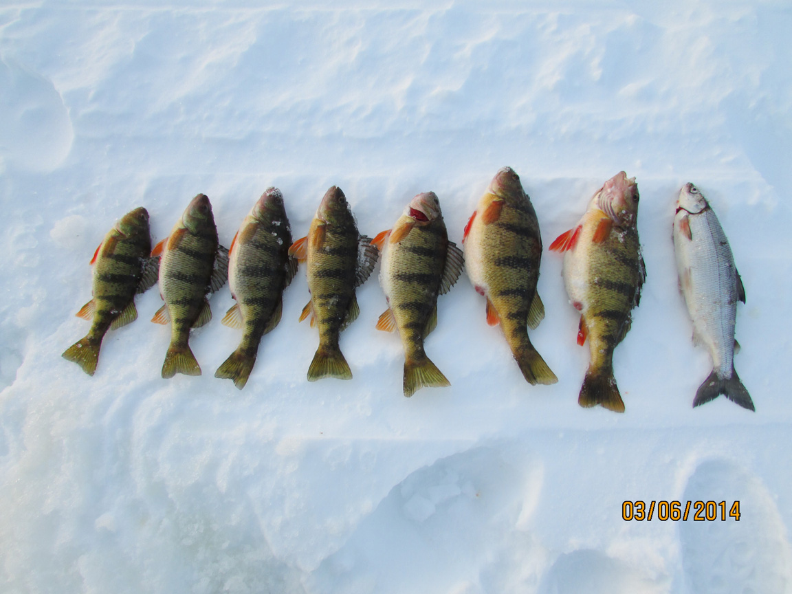 Great day ice fishing at Lake Gogebic!